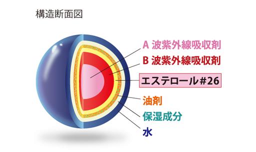 プリュエの構造断面図